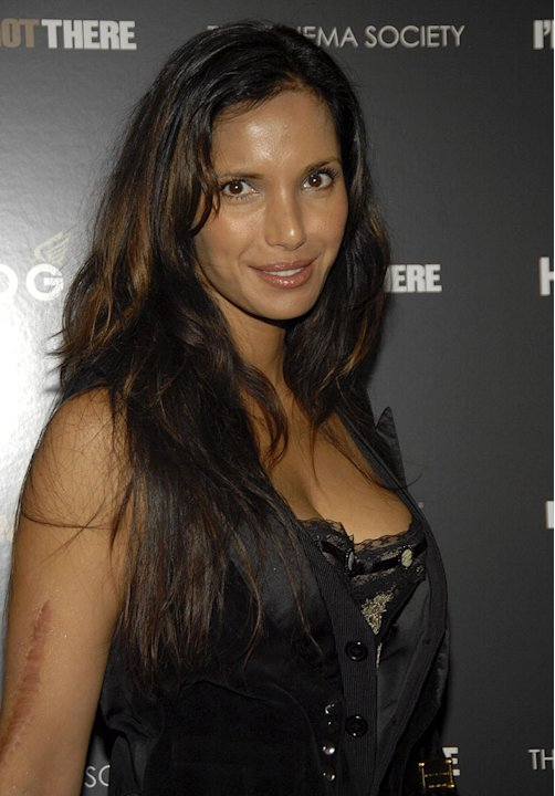 Padma Lakshmi arrives at the New York Premiere of &quot;I'm Not There&quot; at the Chelsea West Theater on November 13, 2007 in New York City. 