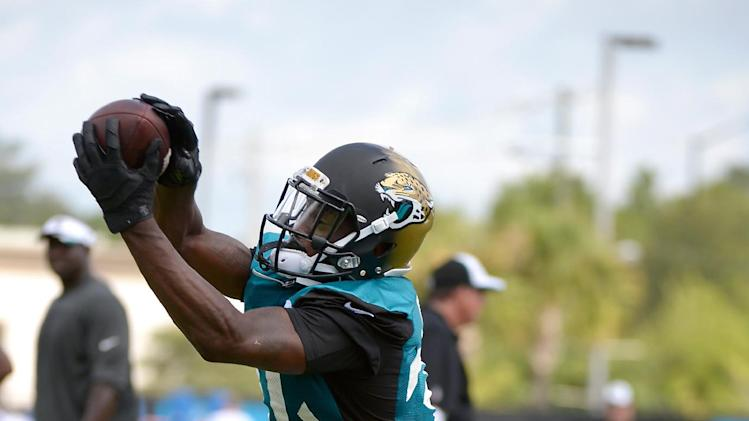 Jacksonville Jaguars running back Storm Johnson (34) catches a pass during NFL football training camp in Jacksonville, Fla., Friday, July 25, 2014