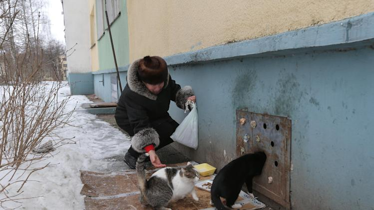 Antonina Gayenko feeds cats outside  an apartment building in the Belarusian capital Minsk, Monday, Feb. 4, 2013. Municipal authorities in Belarus have walled up stray cats in basements in compliance with Soviet-era regulations, dooming them to death of hunger. But some residents made holes for cats to escape. (AP Photo/Sergei Grits)