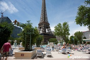 Revelers at the Paris Las Vegas may be able to get their hangovers cured by bus.