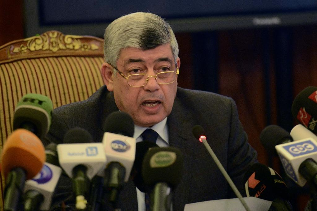 Egypt interior minister replaced in reshuffle