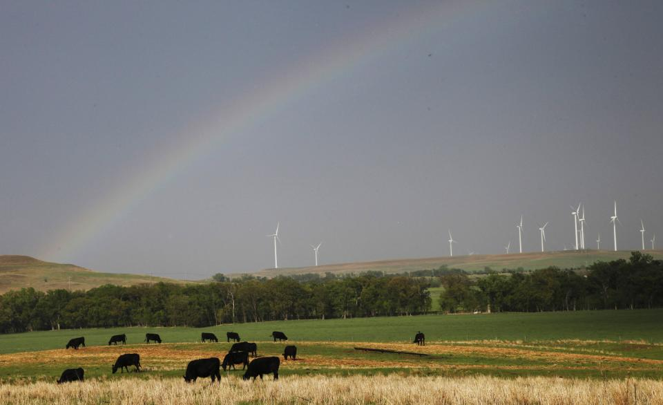 A rainbow reaches across the sky above grazing cattle and the Smoky Hills Wind Farm, Saturday, April 14, 2012 near Ellsworth, Kan. (AP Photo/Orlin Wagner)
