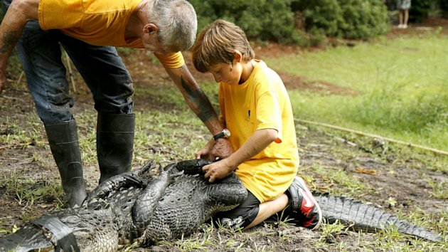 South Carolina Boy Nabs Alligator That Bit Woman (ABC News)