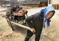 An elderly Chinese woman uses a cart to collect firewood for cooking near the Yangtze river city of Jiujiang in 2007. China&#39;s economic growth of the last 20 years has generally been met with declining happiness, especially among the poorest members of society, according to a US analysis published on Monday