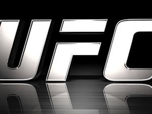 UFC Announces Jan. 4 Event for Singapore, Plans Several 2014 Dates in Asia