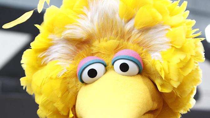 """FILE - In this Aug. 30, 2009 file photo, Big Bird arrives at the Daytime Emmy Awards in Los Angeles.  What do a Navy mom, Big Bird and AARP have in common? They all want President Barack Obama and Republican Mitt Romney to leave them alone. The two candidates are drawing on personal stories and pop culture references in campaign ads, daily speeches and debate zingers as each seeks to cast himself as an """"everyman"""" and broaden his appeal in the presidential race's closing weeks. But they're encountering resistance at seemingly every turn by a broad collection of people they mention and entities they reference. And this year, the complaints go beyond those that usually occur during campaign years: griping by musical groups whose songs candidates use at rallies. (AP Photo/Matt Sayles, File)"""