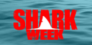 Shark Week: Fishing with the Best Curated Content image Screen shot 2013 08 06 at 3.00.33 PM