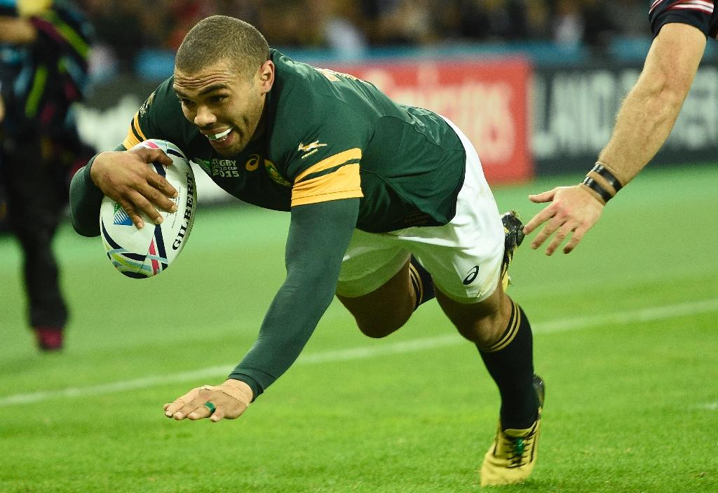 Springboks play repeat knockout at Rugby World Cup