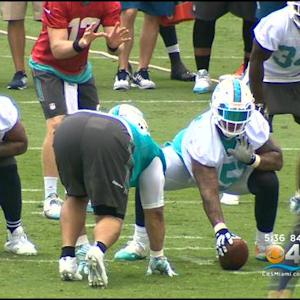Miami Dolphins Players Return To Practice Field For OTA's