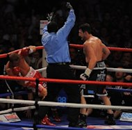 Britain's Carl Froch knocks down Lucian Bute of Romania to win their IBF super-middleweight title match in Nottingham