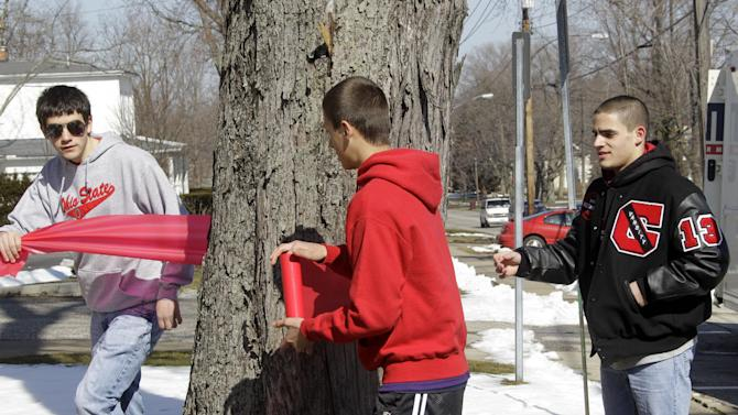 Nick Giorgi, left, Alek Bost and Joe Laudato, right, tie  ribbons on trees in downtown in Chardon, Ohio in memory of victims of the school shooting Tuesday, Feb. 28, 2012. A gunman opened fire inside the high school's cafeteria at the start of the school day Monday. Two of the victims have died and wounding three remain hospitalized  (AP Photo/Mark Duncan)