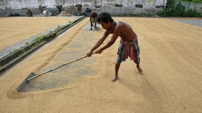 Labourers work at a rice mill on the outskirts of Agartala, Tripura August 29, 2013. REUTERS/Jayanta Dey