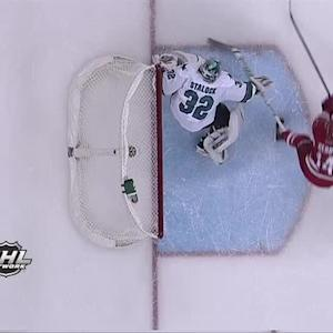 NHL - Top 10 Saves 12/13/2013