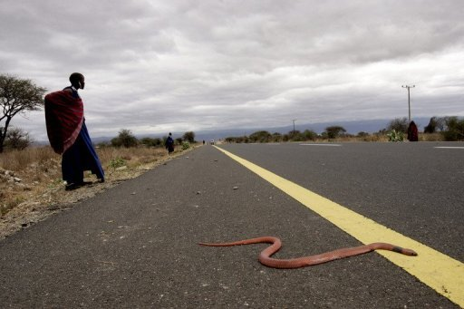 <p>A road close to Arusha in Tanzania, pictured in 2007. Police were questioning survivors Wednesday after 42 immigrants were found suffocated to death inside an overcrowed truck, the interior ministry said Wednesday. Seventy-four others were inside the truck when it was stopped in central Dodoma province Tuesday, around 400 kilometres (250 miles) west of the capital Dar es Salaam.</p>