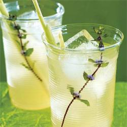 What to serve: Put a new-age spin on the gin and tonic and fortify your spirits with exotic flavors (courtesy of a Tea Forte lemongrass-mint infuser) and sweeten it with simple syrup.