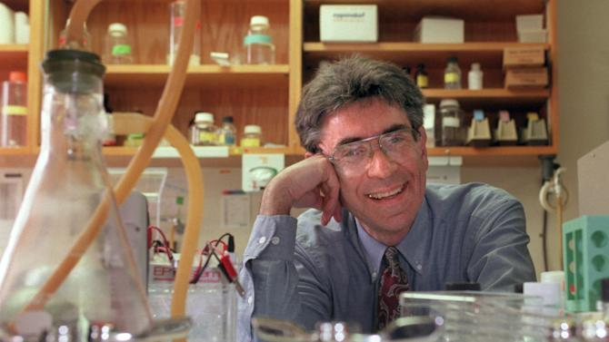 "Dr. Robert Lefkowitz of Duke University photographed in his lab on campus in Durham, N.C. in 1996.  Lefkowitz along with American Brian Kobilka have won the 2012 Nobel Prize in chemistry it was announced early Wednesday morning Oct. 10, 2012. The Royal Swedish Academy of Sciences cited the two researchers Wednesday ""for studies of G-protein-coupled receptors."" (AP Photo/News & Observer file photo)"