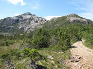 Bokan Mountain in Southeast Alaska is the proposed site of a heavy rare earth element mine.