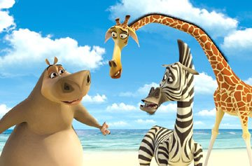 Gloria the Hippo (voice of Jada Pinkett-Smith ), Marty the Zebra (voice of Chris Rock ) and Melman the Giraffe (voice of David Schwimmer ) in Dreamworks' Madagascar