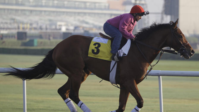Little Mike from the U.S. works out at the Meydan racecourse two days before the Dubai World Cup, the world's richest horse racing, in Dubai, United Arab Emirates, Thursday, March 28, 2013. (AP Photo/Kamran Jebreili)