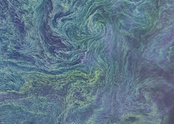 Psychedelic Swirls Show Algae Bloom from Space