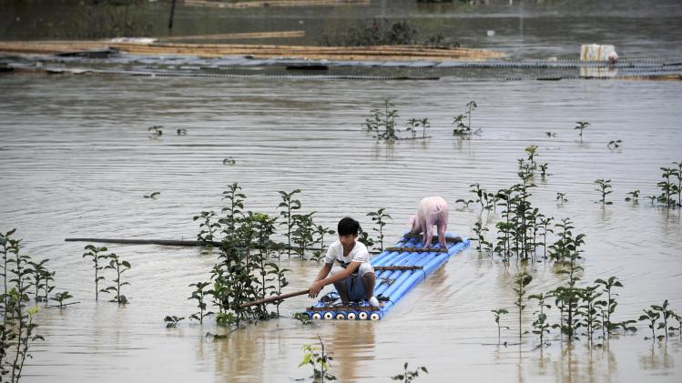 A man rows a makeshift raft to remove a stranded pig from a flooded area after a heavy rainfall hit Lishui