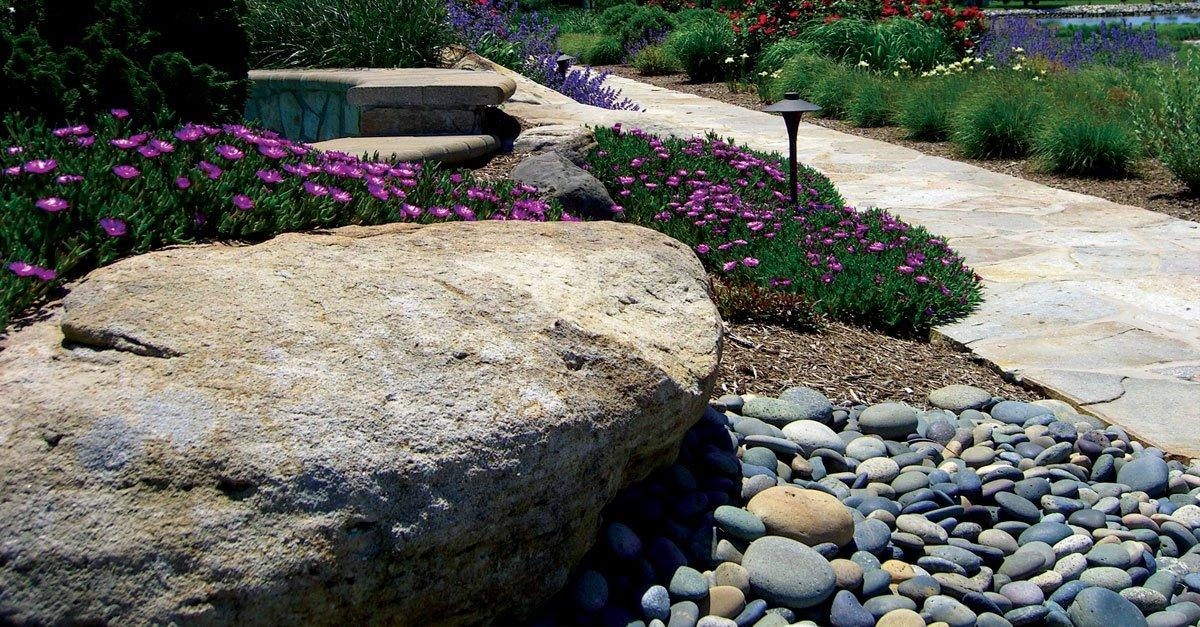 Enhance Your Backyard with Decorative Pebbles