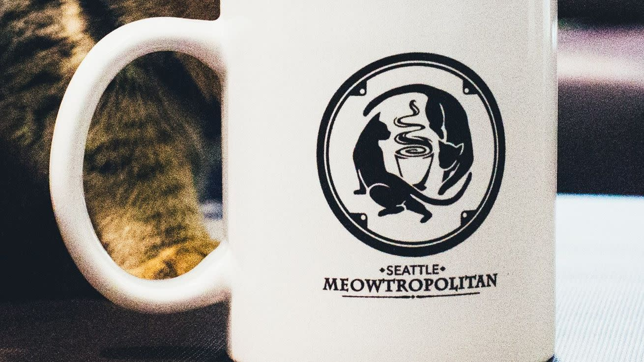 Seattle Meowtropolitan Ready to Unleash Cats and Coffee in Wallingford