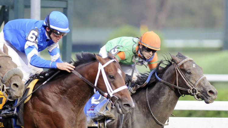Alpha, left, with Ramon Dominguez aboard, and Golden Ticket, with, David Cohen aboard, finish in a dead heat  as they both win the Travers Stakes horse race at Saratoga Race Course in Saratoga Springs, N.Y., Saturday, Aug. 25, 2012. (AP Photo/Hans Pennink)