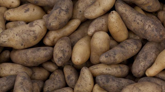 Small Potatoes, Not: Suit Alleges OPEC-like Tuber Cartel