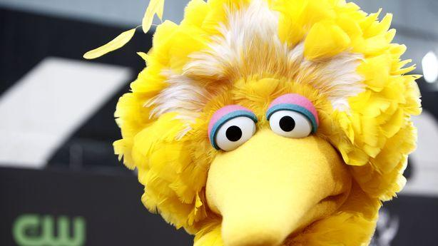 The Actor Who Created Big Bird Makes About $314,000 a Year