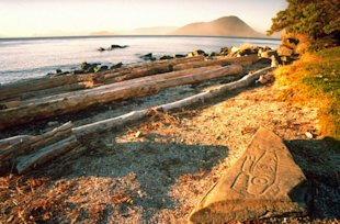 Petroglyph Beach in Alaska (Photo: Wrangell Convention and Visitor Bureau, photographer Ivan Simonek)