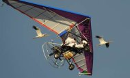 Putin Leads Flock Of Cranes In Hang-Glider