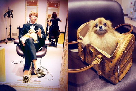 Eunhyuk discloses his pet, Yi Choco