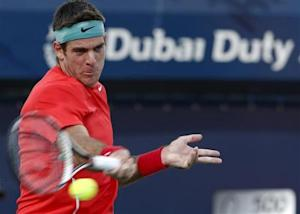 Del Potro of Argentina returns the ball to Devvarman of India during their men's singles match at the ATP Dubai Tennis Championships