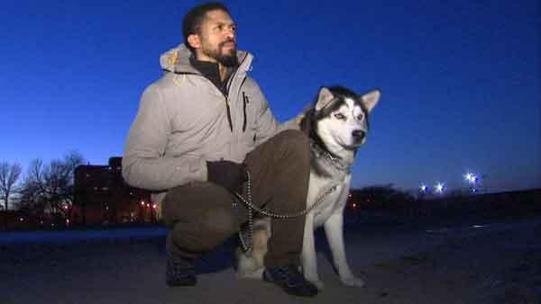 Dog trapped under ice on Lake Michigan survives