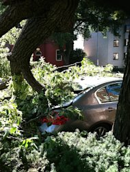 A tree toppled by severe storms sits atop a car in Washington's Dupont Circle neighborhood on Saturday, June 30, 2012 in Washington. More than two million people across the eastern U.S. lost power after violent storms and two people died, including a 90-year-old woman asleep in bed when a tree slammed into her home, a police spokeswoman said Saturday. (AP Photo/Jessica Gresko)
