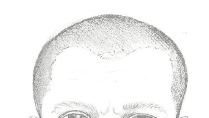 This image released by Michigan State Police shows drawing of a man suspected in a series of shootings over the past week over a three-county area of southeastern Michigan.  Wixom police say in a release that the sketch was obtained from a witness to a shooting Thursday, Oct. 18, 2012,  in Ingham County. That witness also described the suspect's vehicle as resembling a dark 1998 Oldsmobile Alero or a 1998 Toyota Camry.  (AP Photo/Michigan State Police)