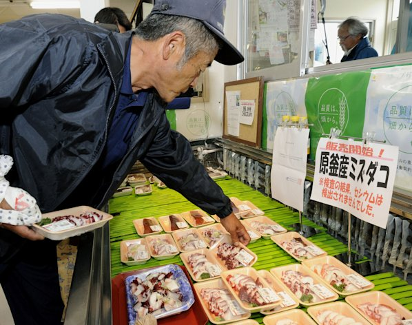 A shopper chooses packs of octopus caught in the water off Fukushima at a supermarket in Soma, Fukushima Prefecture, northeastern Japan, Monday, June 25, 2012. The first fishing catch from Japan's Fukushima coastline since last year's nuclear disaster went on sale Monday, but was limited to octopus and marine snails because of persisting fears about radiation. They were caught Friday, and were boiled so they last longer while getting tested for radiation before they could be sold Monday. The sign reads: Sales started! North Pacific giant octopus caught in Haragawa, no radioactive cesium was detected. (AP Photo/Kyodo News) JAPAN OUT, MANDATORY CREDIT, NO LICENSING IN CHINA, HONG KONG, JAPAN, SOUTH KOREA AND FRANCE