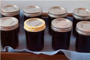 Homemade grape jelly is easier than you think.