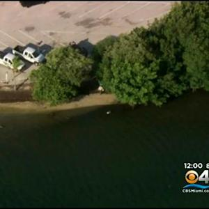 Body Found Near Marina Believed To Be Missing Boater