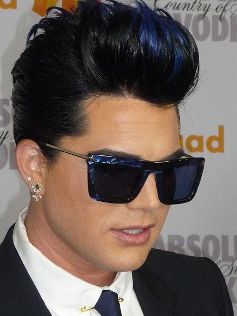 Did Adam Lambert Insure His Voice? Other Stars Who Have Weird Insurance Policies