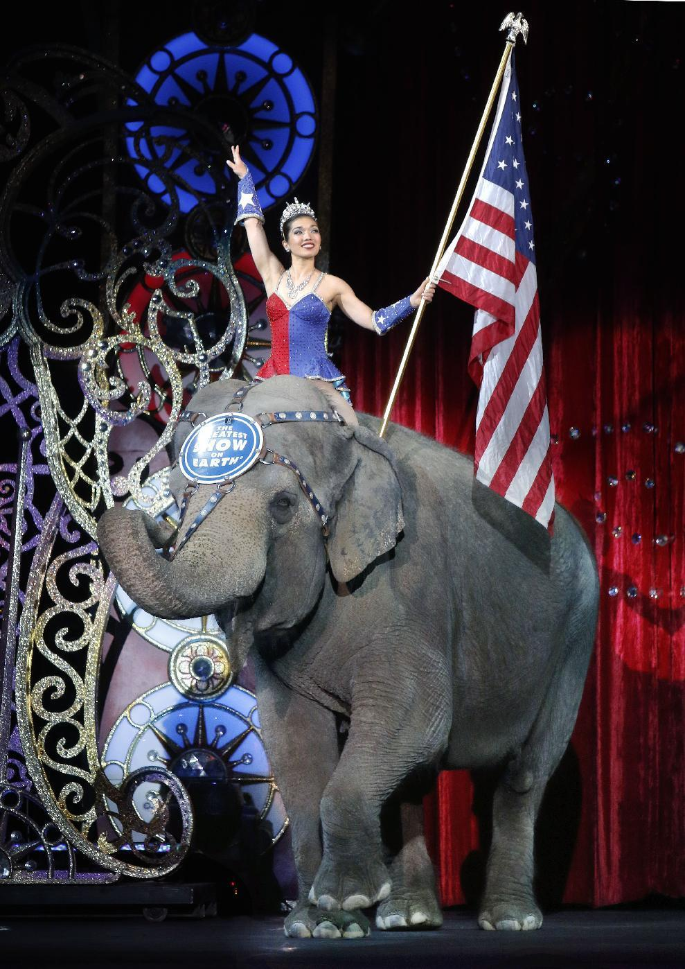 Love it or hate it, people have opinions on the circus