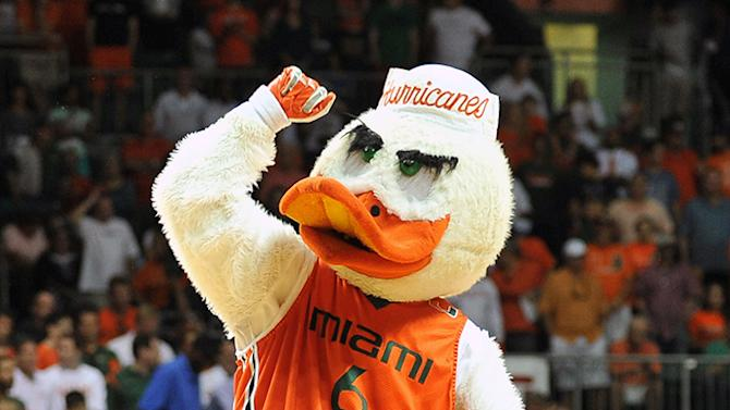 Sebastian the Ibis, the mascot of the Miami Hurricanes