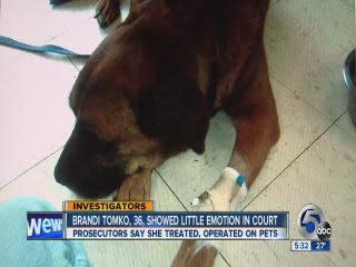 Live on Five: 'Fake vet' sentenced