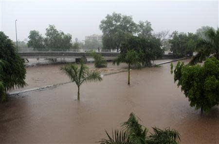Trees stand submerged in water after a river overflowed its banks in Culiacan