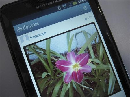 A photo illustration shows a picture of a flower taken with the photo-sharing application Instagram on the screen of an Android mobile phone in Los Angeles