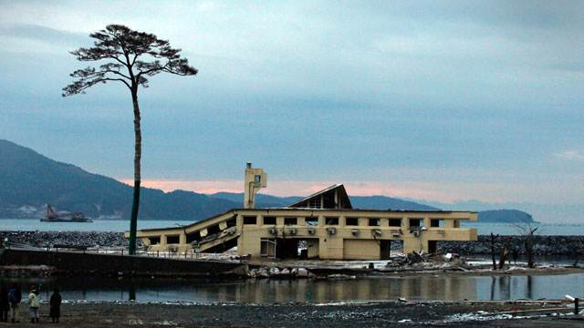 'Miracle Pine Tree' Removed in Tsunami-Ravaged City