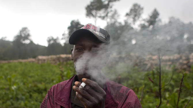 In this picture taken Aug. 16, 2012, vegetable farmer Nevel Dayis smokes a cigarette as he poses for a picture in La Visite National Park, Haiti, a rare piece of protected woodland in one of the most deforested countries on earth. A police operation to clear out farmers living for generations in the national park is now under investigation after four squatters were shot to death in the attempted eviction. (AP Photo/Dieu Nalio Chery)