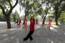 File photo of people practising tai chi, a Chinese martial art, during morning exercises at Longtan Park in Beijing