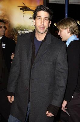 Premiere: David Schwimmer at the Westwood premiere of Collateral Damage - 2/4/2002